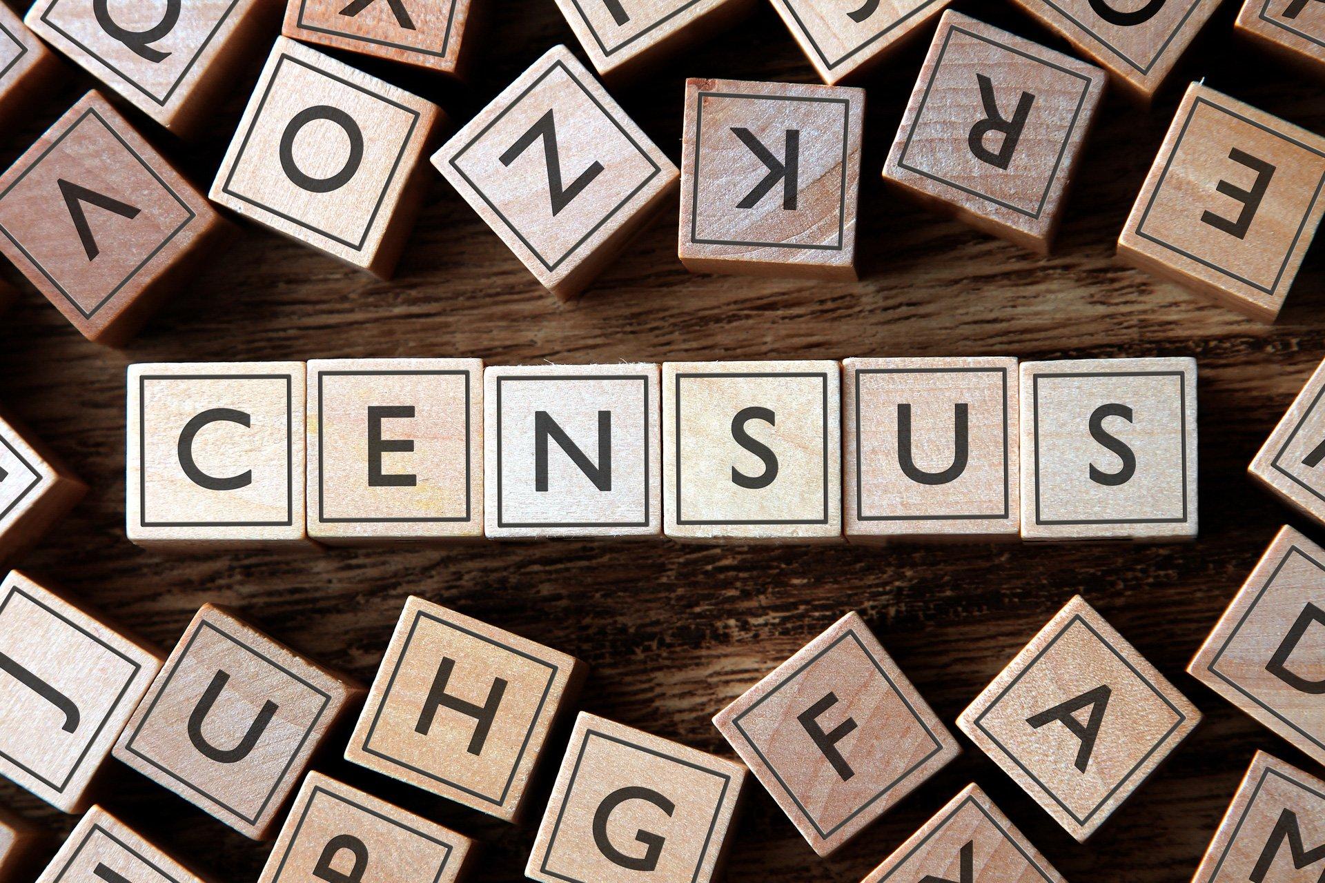 annual census